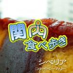 kotei_eye